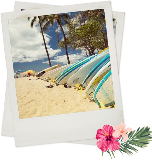 Polaroid of surfboards laying in sand near palm tress