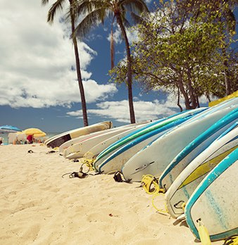 Surfboards laying in sand next to palm trees