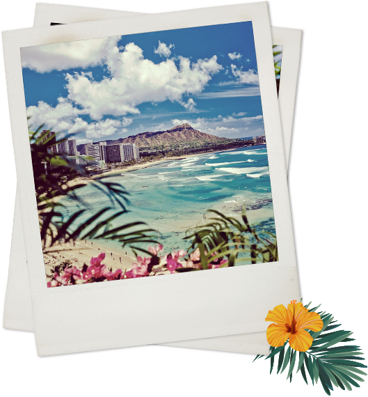 Polaroid of beach view with palm leaves and buildings in background