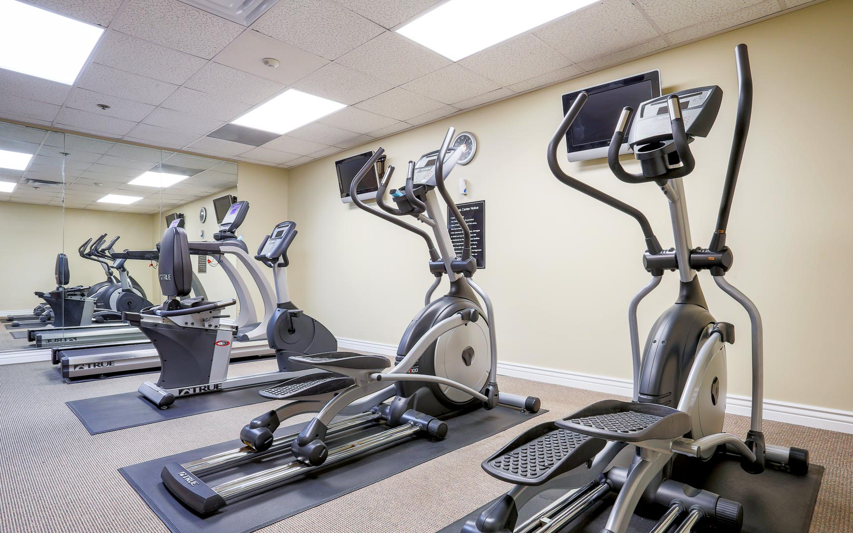 stair steppers and bicycle machines in fitness center