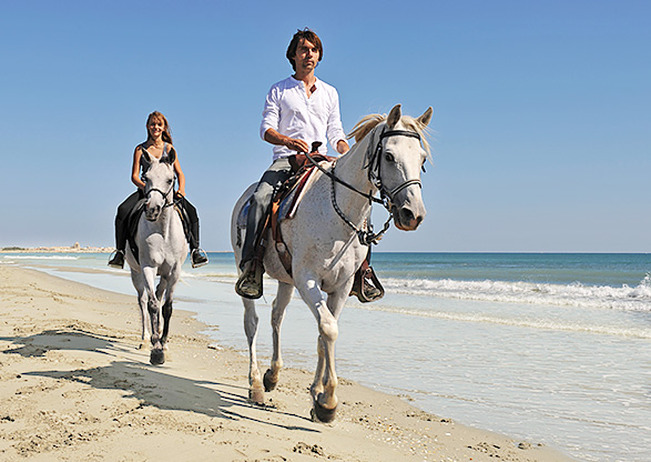 Ride a Horse on the Beach  Inset