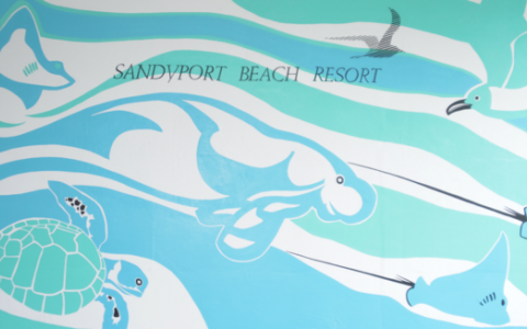 Bahamian Artwork prominently featured at Sandyport Beach Resort