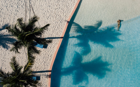 aerial view of a woman in a pool with two palm trees