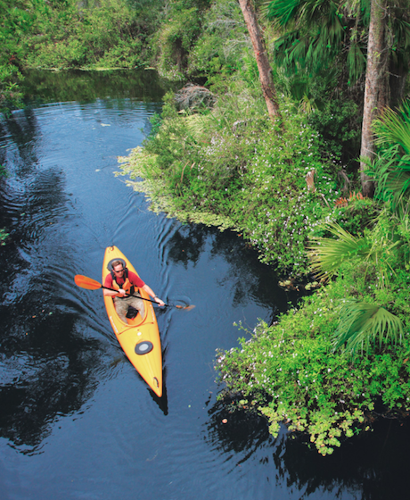 Inset Image Sanibel's Must-See Attractions