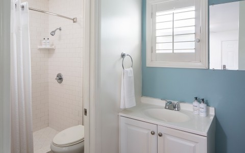 Guest bathroom with white features and blue wall