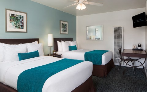 Guest room with two beds with teal colored accent