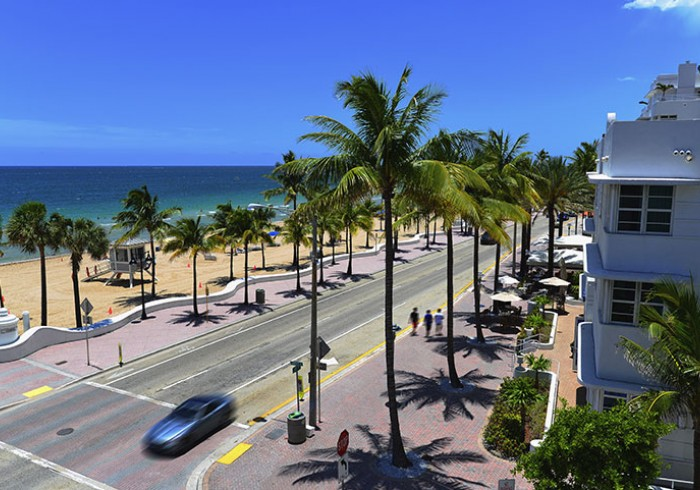 Aerial view of street running along palm trees & beach