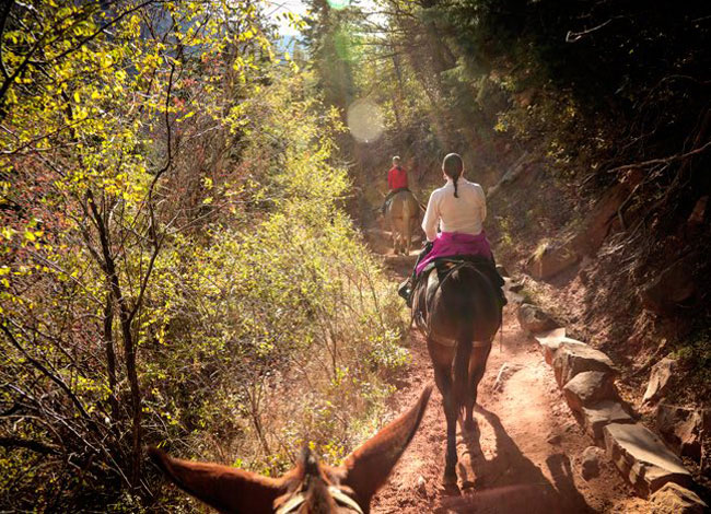 horse back riding   summer getaway   things to do
