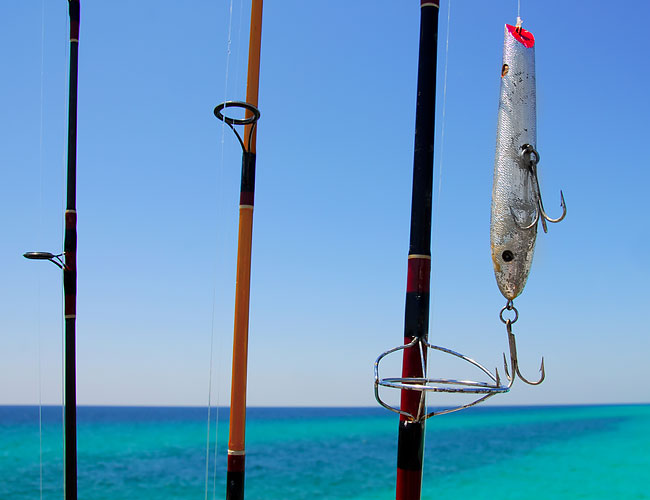 Fishing poles and fishing lure
