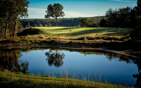 Golf course lake-42399327
