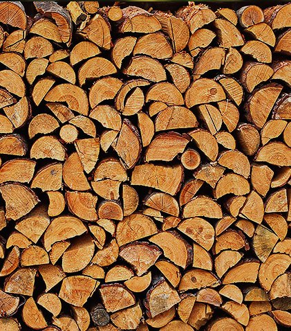 Cut wooden log texture