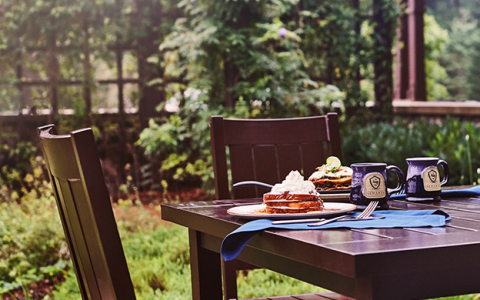 outdoor dining with sewanee inn mugs and french toast and trees in background-4239939