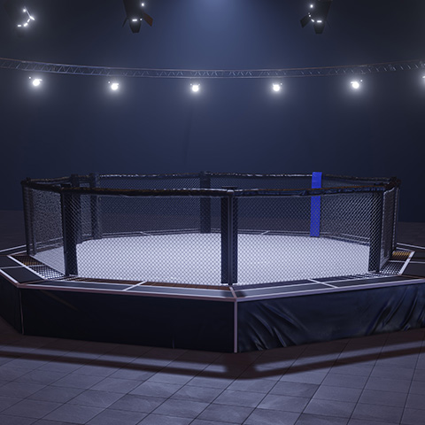 showboat home upcoming events mmafight