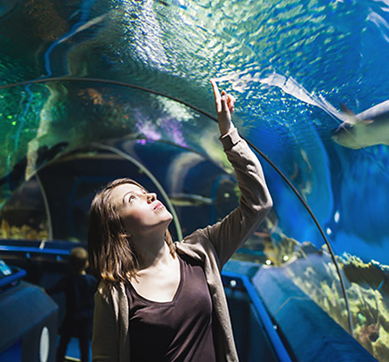 girl looking at fish in an aquarium