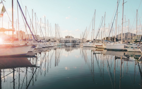 marina with boats docked during sunrise