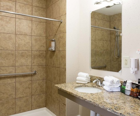 Bathroom with ADA bars in shower