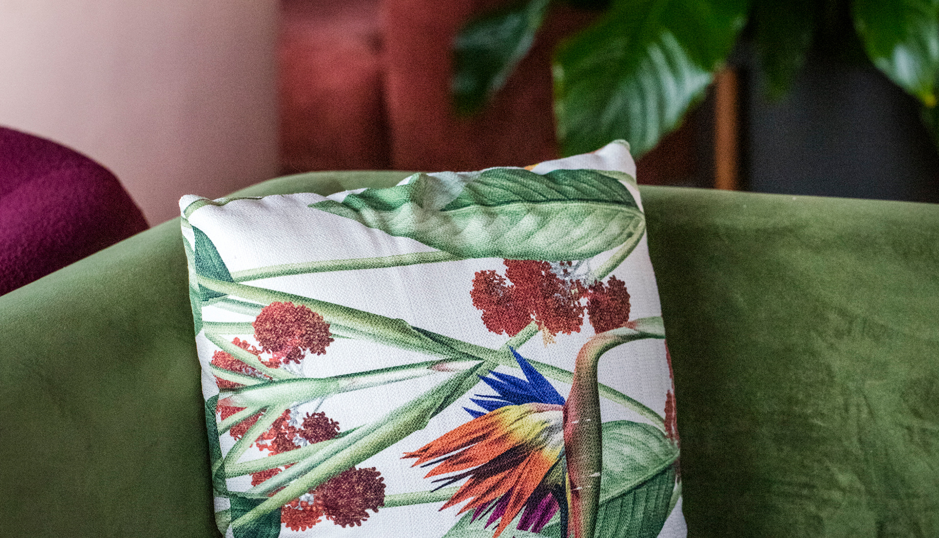 plant printed pillow on a green velvet sofa