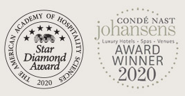 condenastjohansensawards2020