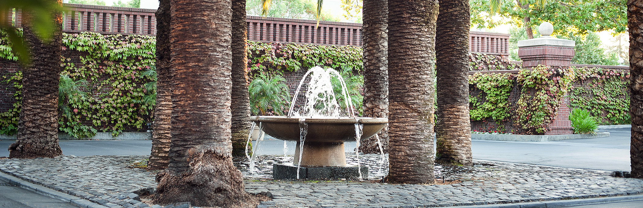 a fountain with palm trees around it