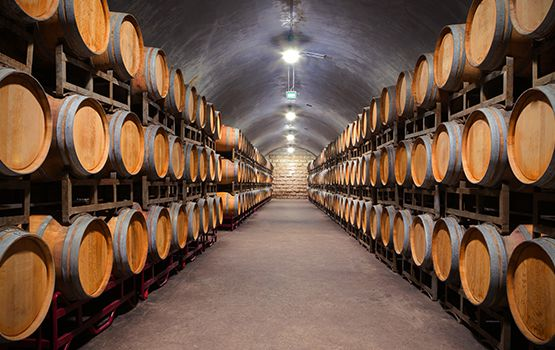 rows of wine barrels in a room