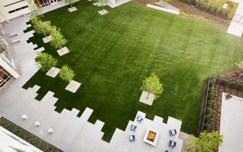 overview of grass and lounge area at the hotel