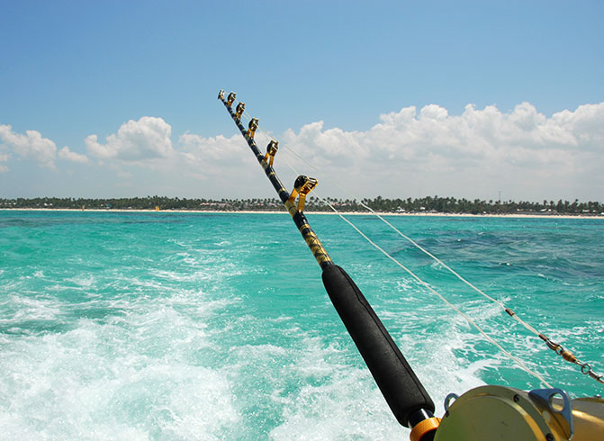 fishing pole and island in the background