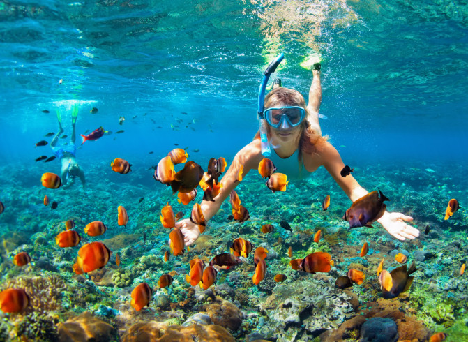 woman snorkeling with tropical fish surrounding her