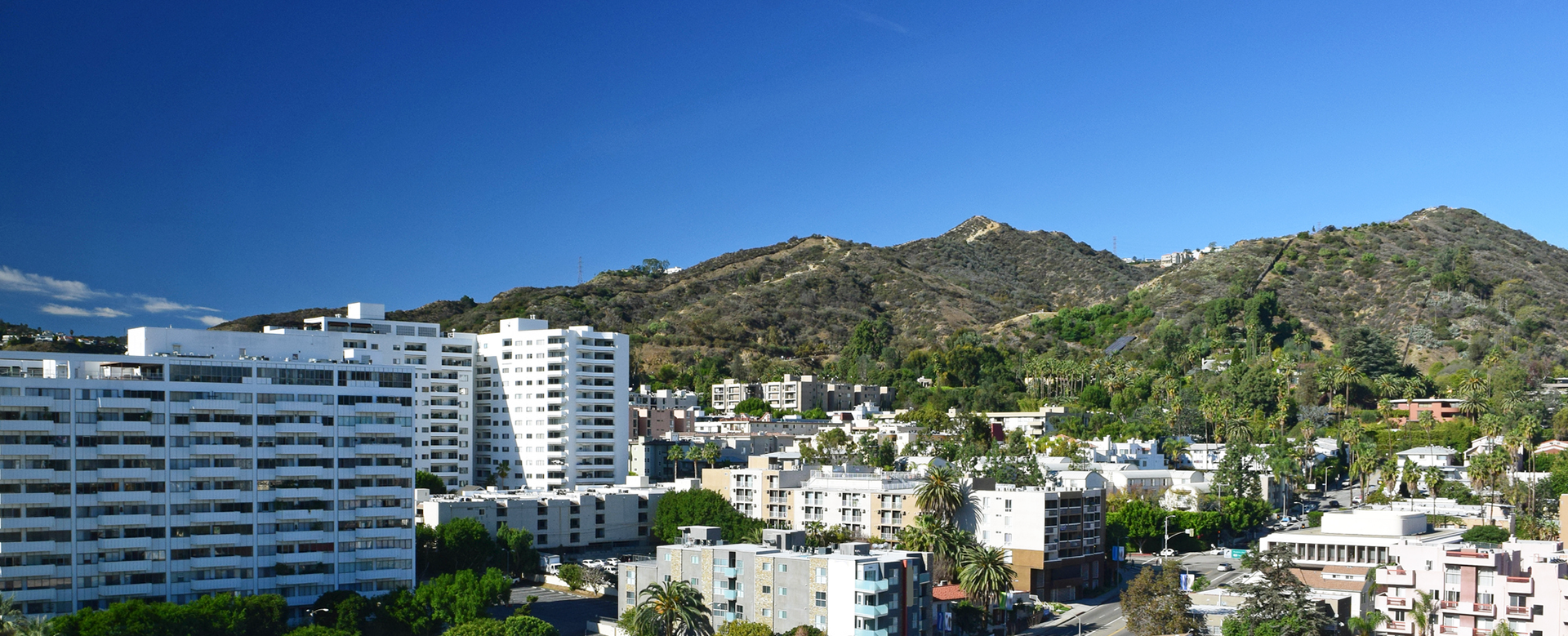 los angeles view of buildings and hills