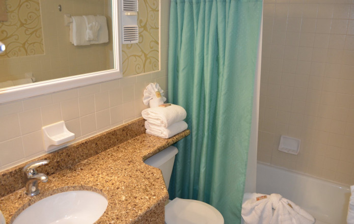Limited View Suite - Plan 5-Guest bathroom with green shower curtain
