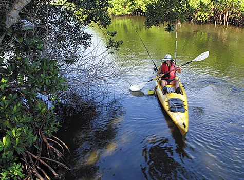 woman kayaking in intracoastal with greenery