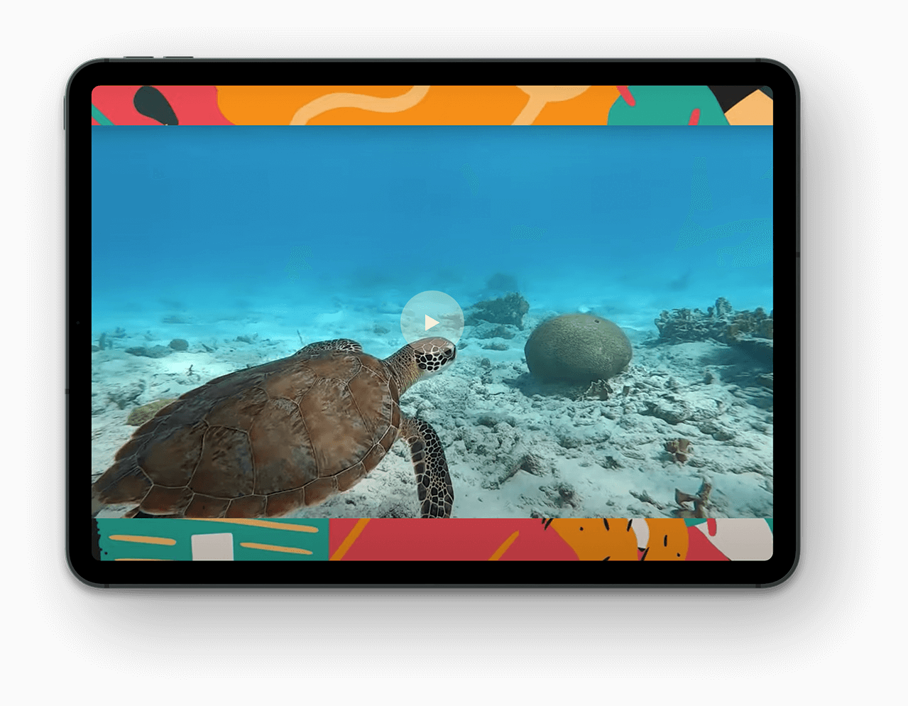 Bonaire Ipad view