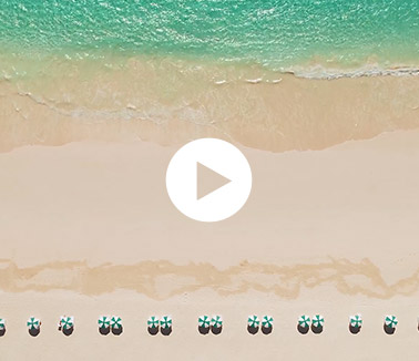 Video thumbnail with umbrellas lined up on the beach