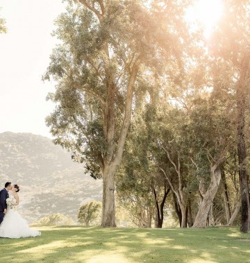 bride and groom standing in an open field with tall trees as the sun gleams behind the trees