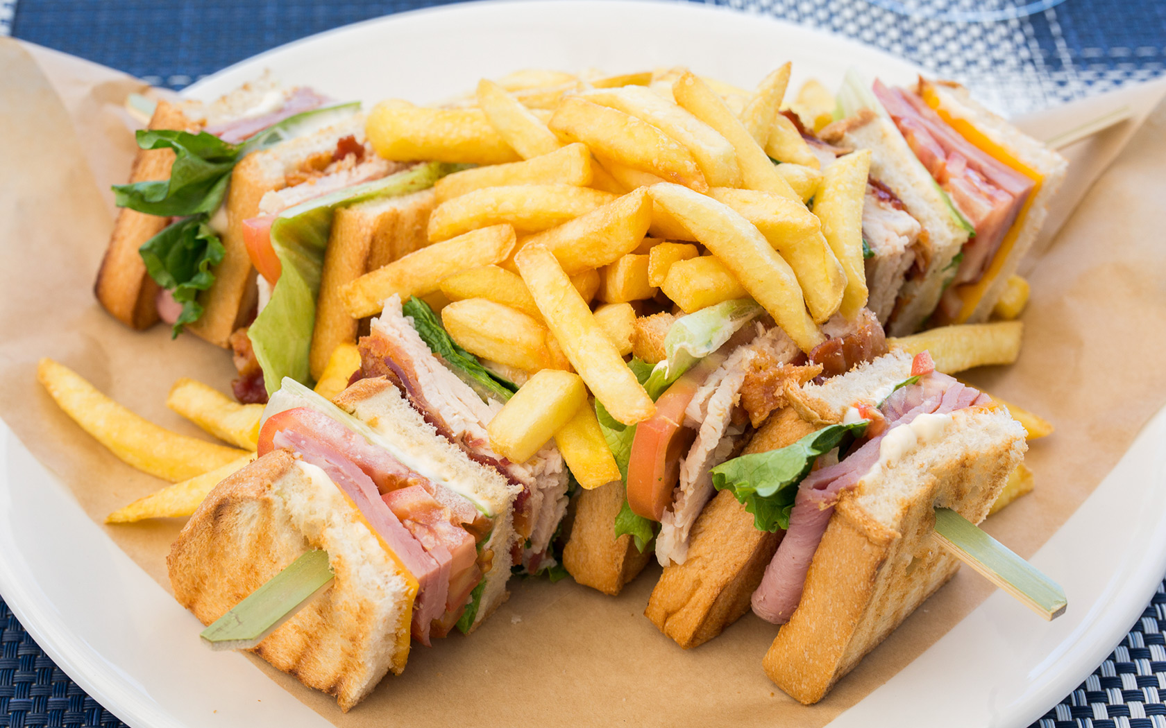 sandwich plate with fries