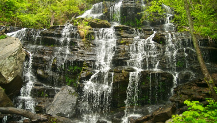 Clemson Area Hiking and Biking Trails