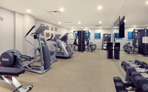hotel gym with a tv, free weights, and cardio equipment