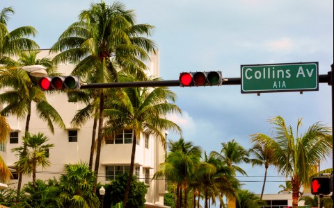 collins ave street sign surrounded by palm trees
