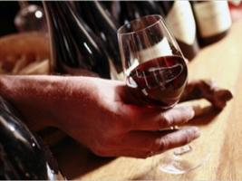The First Steps to Becoming A Self-Taught Wine Connoisseur