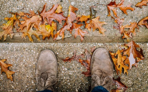 close up of shoes on steps with autumn leaves