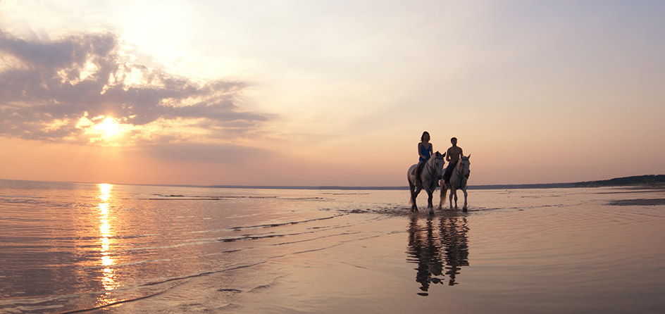 two people riding horses on the beach at sunset