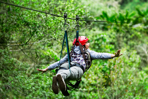 Zip Through The Rainforest
