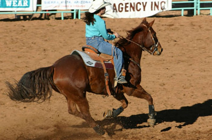 MW-Events-WWCCRodeo-593023fc5f5f9.jpg