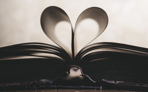open book with two pages formed into a heart