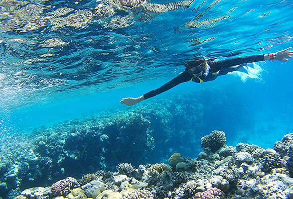 Snorkeling above a reef