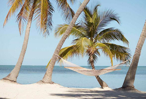 Luxury Resorts in Islamorada FL | Official Site | The
