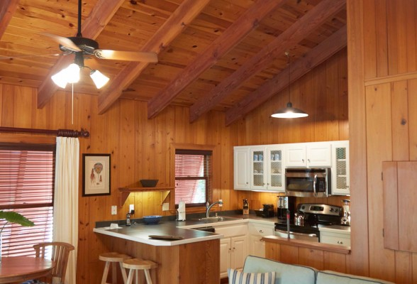 Kitchen with wooden floors and walls 2