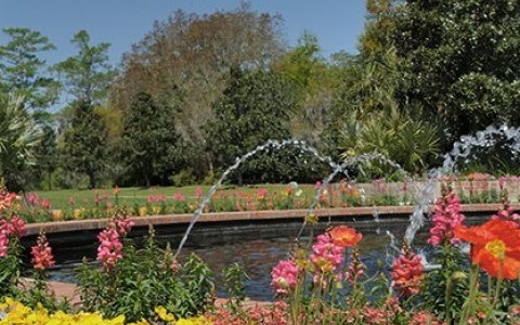 flower garden with pond and fountain