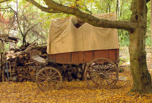 Covered wagon and wood pile_September 2018