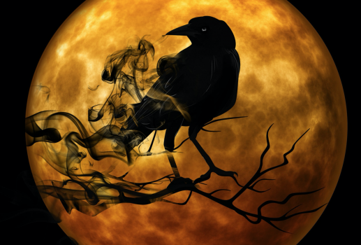 Silhouette of raven on tree branch in front of enormous ochre colored moon