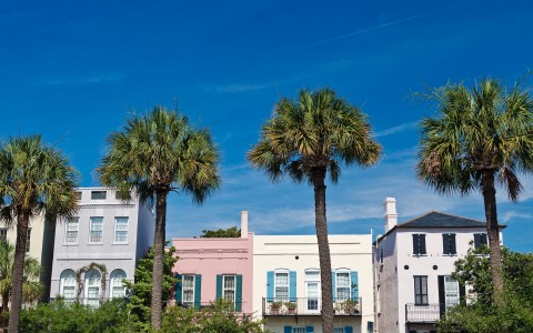 Colorful buildings with balconies & palm trees in front of them